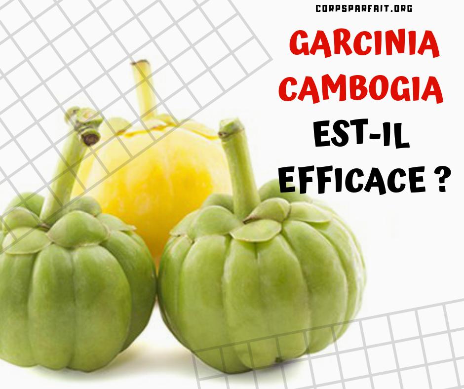 garcinia-cambogia-bio